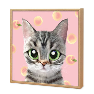 Momo the American shorthair cat's Peach Artframe