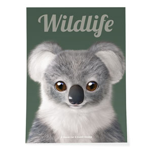 Coco the Koala Magazine Art Poster