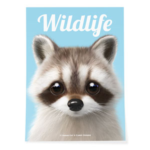 Nugulman the Raccoon Magazine Art Poster