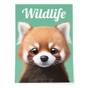 Radi the Lesser Panda Magazine Art Poster