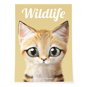 Sandy the Sand cat Magazine Art Poster