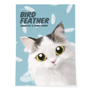 Charlie's Bird Feather New Patterns Art Poster