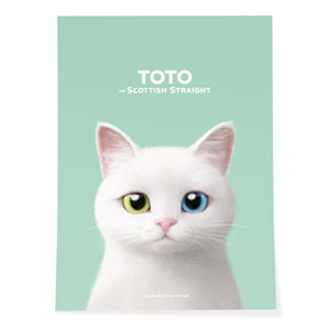 Toto the Scottish Straight Art Poster