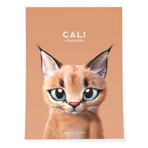 Cali the Caracal Art Poster