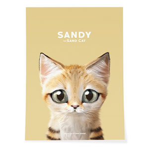 Sandy the Sand cat Art Poster