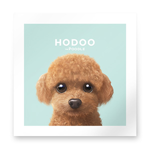 Hodoo the Poodle Art Print