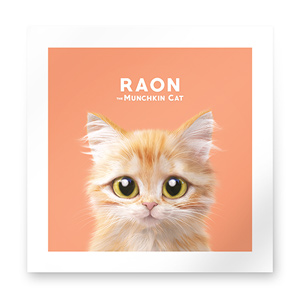 Raon the Kitten Art Print