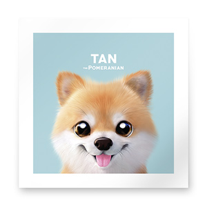 Tan the Pomeranian Art Print