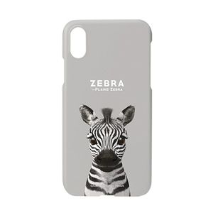 Zebra the Plains Zebra Case