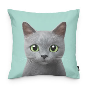 KooChoco Throw Pillow