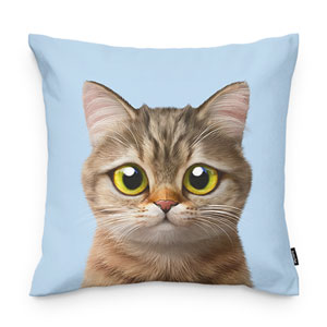 Leo the British Shorthair Throw Pillow