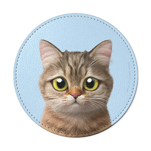 Leo the British Shorthair Leather Coaster