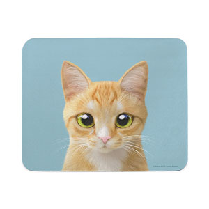 Roy the Cheese Tabby Mouse Pad
