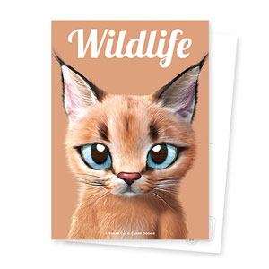 Cali the Caracal Magazine Postcard