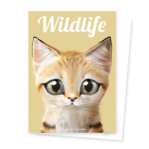 Sandy the Sand cat Magazine Postcard