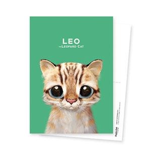 Leo the Leopard cat Postcard