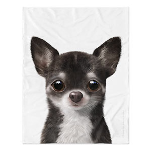 Leon the Chihuahua Soft Blanket