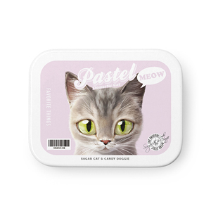 Pastel the Stray cat Retro Tin Case MINIMINI