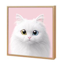 Cloud the Persian Cat Artframe
