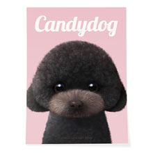 Choco the Black Poodle Magazine Art Poster