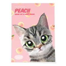 Momo the American shorthair cat's Peach New Patterns Art Poster