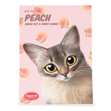 Rose's Peach New Patterns Art Poster