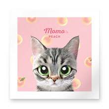 Momo the American shorthair cat's Peach Art Print