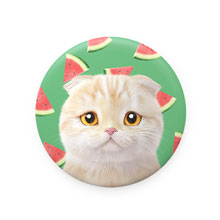 Achi's Watermelon Mirror Button