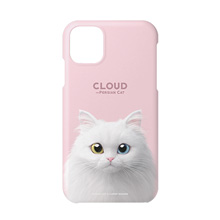 Cloud the Persian Cat Case