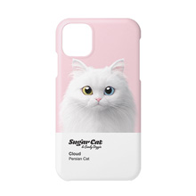 Cloud the Persian Cat Colorchip Case