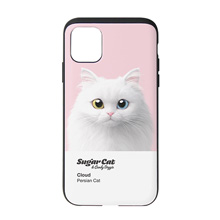 Cloud the Persian Cat Colorchip Slide Case