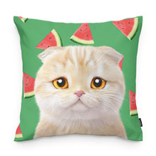 Achi's Watermelon Throw Pillow
