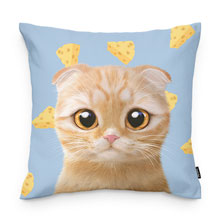 Cheddar's Cheese Throw Pillow