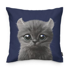Rodi Throw Pillow