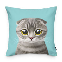 Tory Throw Pillow