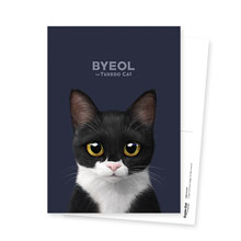 Byeol the Tuxedo Cat Postcard