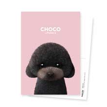 Choco the Black Poodle Postcard