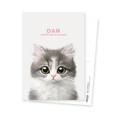 Dan the Kitten Postcard