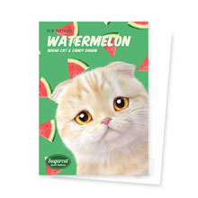 Achi's Watermelon New Patterns Postcard