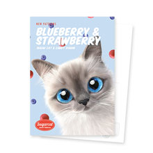 Momo's Blueberry & Strawberry New Patterns Postcard
