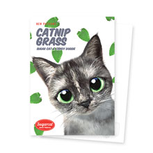 Najung's Catnip New Patterns Postcard