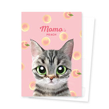 Momo the American shorthair cat's Peach Postcard